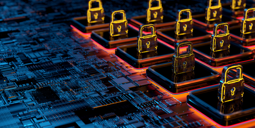 Security locks in a network environment to protect network from network vulnerabilities