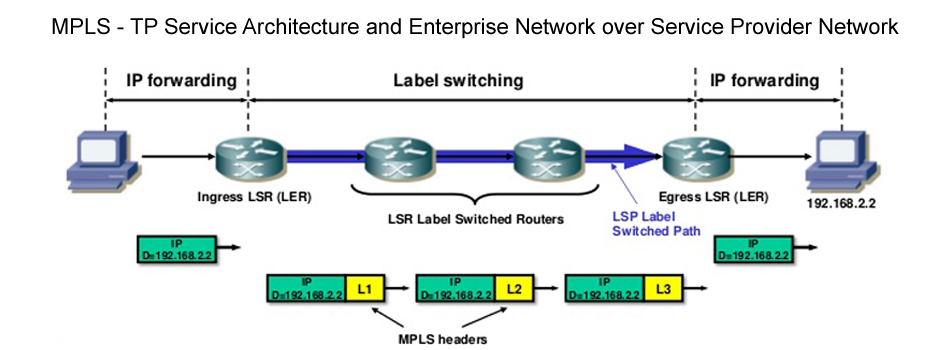 MPLS-TP Service Architecture and Enterprise Network over Service Provider Network
