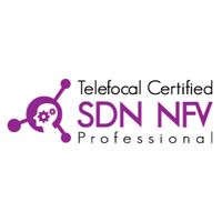 SDN NFV Professional